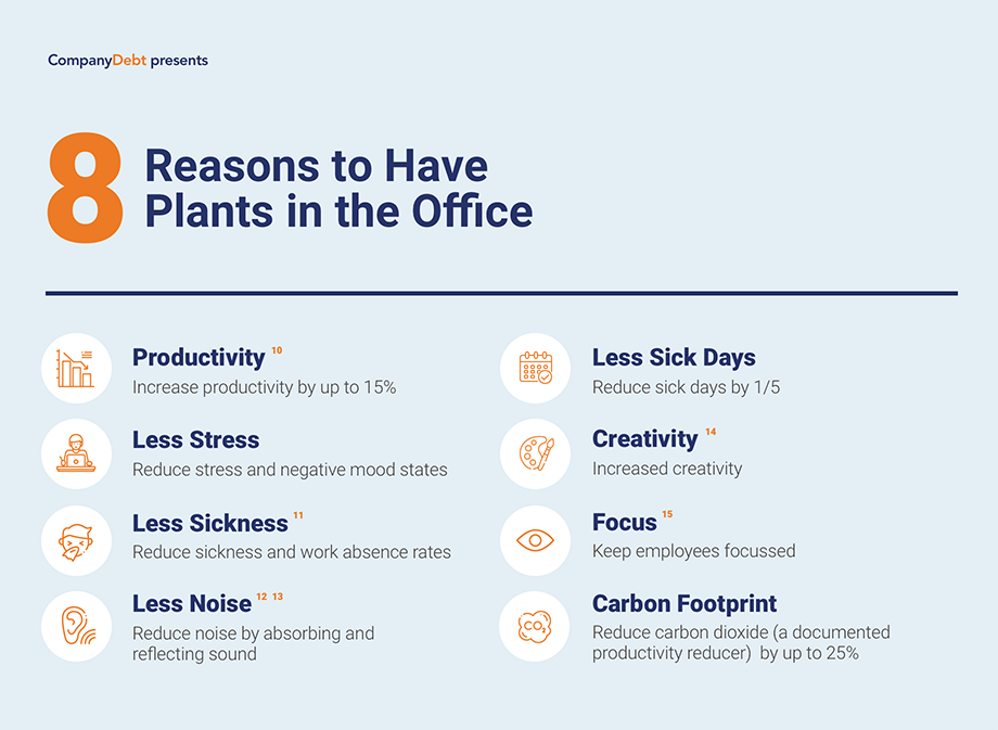 Reasons to Have Plants in the Office